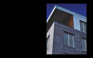 Applicazione Finestra Skywood Evo in legno e alluminio   DF Serramenti